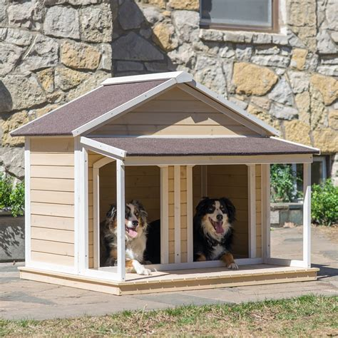 two dogs in a house boomer george duplex dog house antique white wash