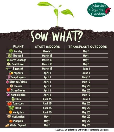 How To Start A Fruit And Vegetable Garden Chart Of When To Start Growing Veggie Fruit Plants