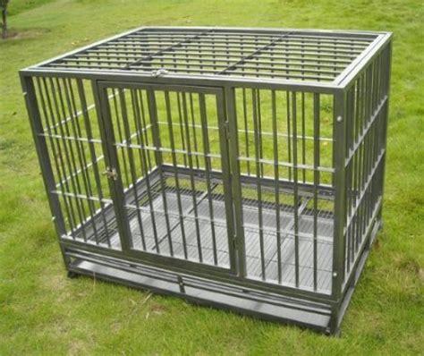 heavy duty kennels best heavy duty escape proof crate