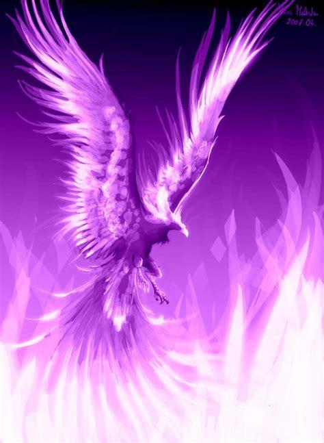 phoenix tattoo purple something inspirational phoenix tattoo and tatting