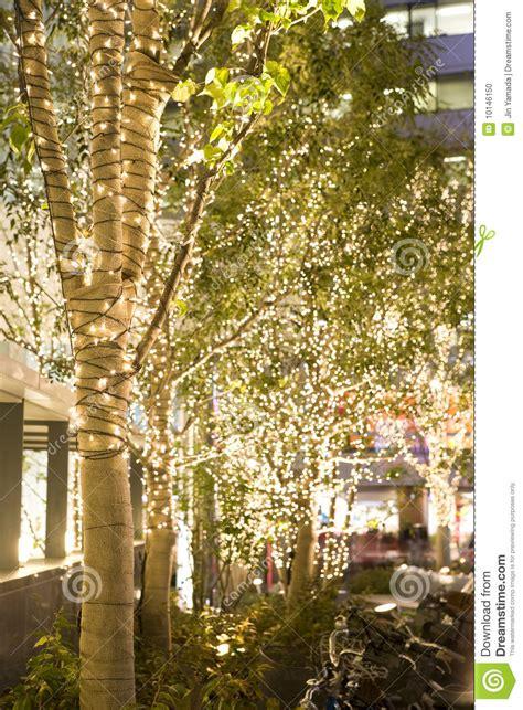 illuminazione fotografia illuminazione fotografia stock immagine di lucidare
