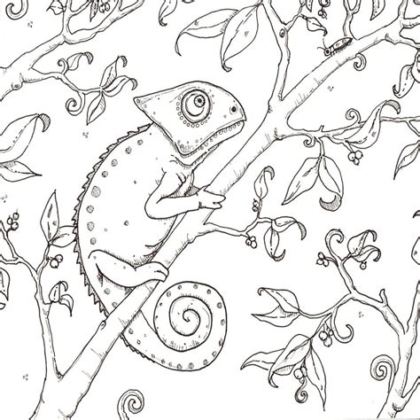 imagenes de paisajes en dibujo dibujos para colorear de paisajes de la selva