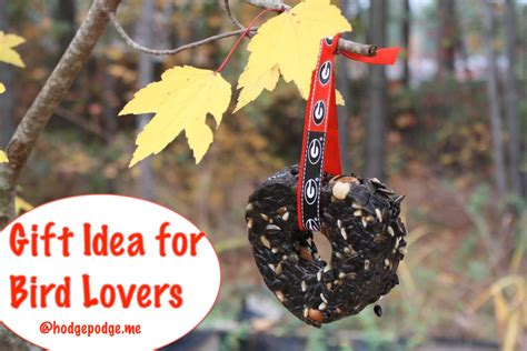 gift idea for bird lovers hodgepodge