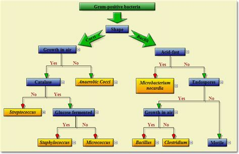 jquery flowchart plugin jquery flowchart 28 images process flow diagram jquery