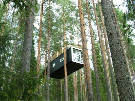 tiny home hanging in a tree