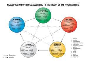 Five Elements Five Elements Tcm Spleen Lung Kidney Liver
