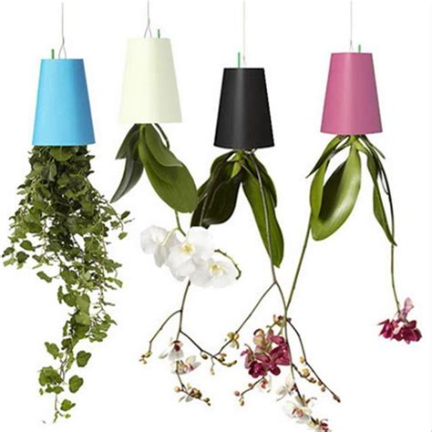 Hanging Ceiling Ls by Plant Holder Pot Hanging Sky Planters Plant