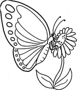 gambar bunga kartun hitam putih  kupu kupu kartun