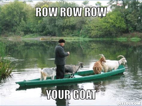 row the boat meme lol shut up i m talking