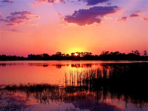 05 Set Sunset Pink Muda fiery pink sunset wallpaper by richardxthripp on deviantart