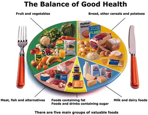 Healthy Diet by Food Healthy Meals