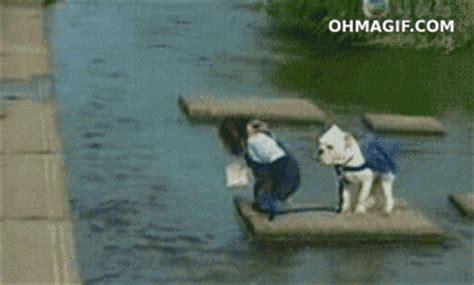 gambar tulisan animasi bergerak lucu blackberry gambar bergerak monyet lucu dan anjing gambar