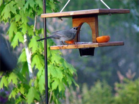 oriole feeder bird feeders houses and bird baths