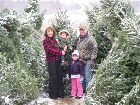 visit our christmas tree farm fisher christmas trees of