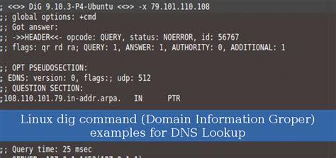 Linux Lookup Linux Dig Command Domain Information Groper Exles For Dns Lookup