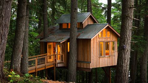Treehouse Plumbing by Adults Who Live In Treehouses On Vimeo
