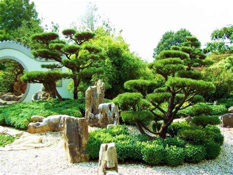 chinesische le garten chinesischer garten photo de arboretum ellerhoop