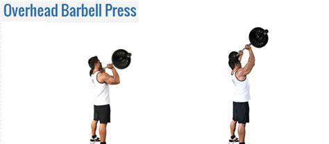 Barbell Tangan Akusehat Cara Cepat Membentuk Otot Leher Dan Bahu