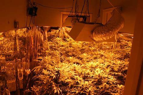 Grow House by Bust Pot Grow House In Edgartown The Martha S