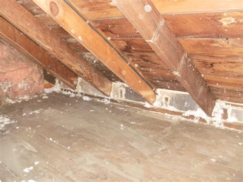 blown in insulation in attic marvelous blowing insulation into attic 6 removing blown in insulation attic newsonair org