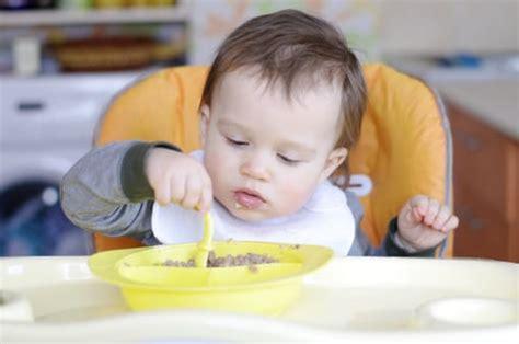 bambino 10 mesi alimentazione bambino 10 mesi californiaautodetail