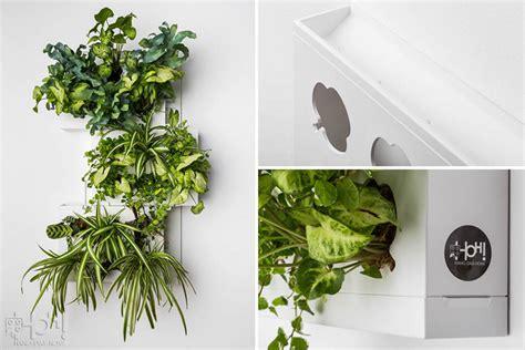 pannelli per giardini verticali pannelli per giardini verticali hoh trio livingdeco