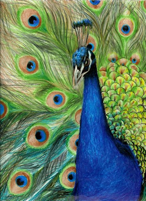 colored pencil artists use those colored pencils to sketch your imagination