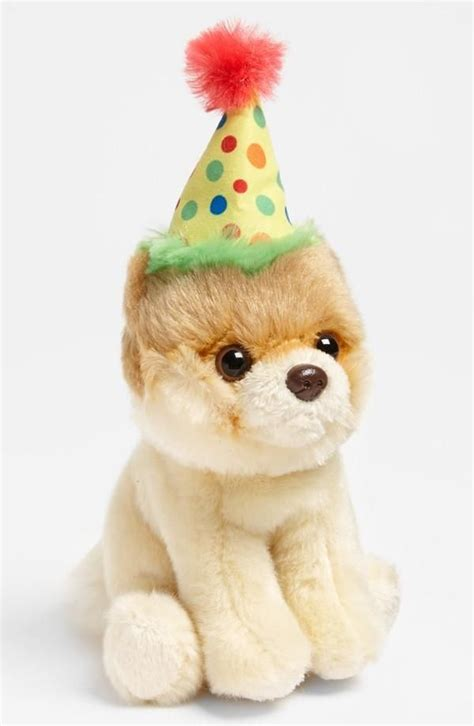 Gund Happy Birthday Pup 19 best boo visits nordstrom images on boo