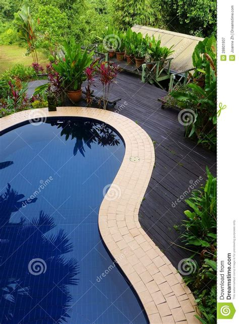 wood patio pool layout  landscaping stock image