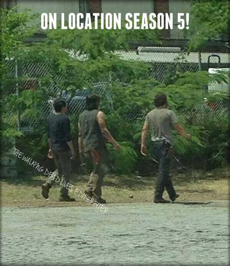 film seri walking dead season 5 season 5 filming the walking dead pinterest