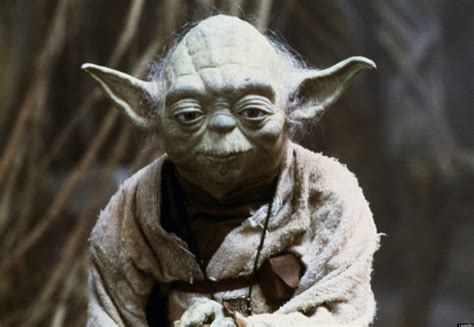 Starwars Yoda yoda could be stand alone wars feature report