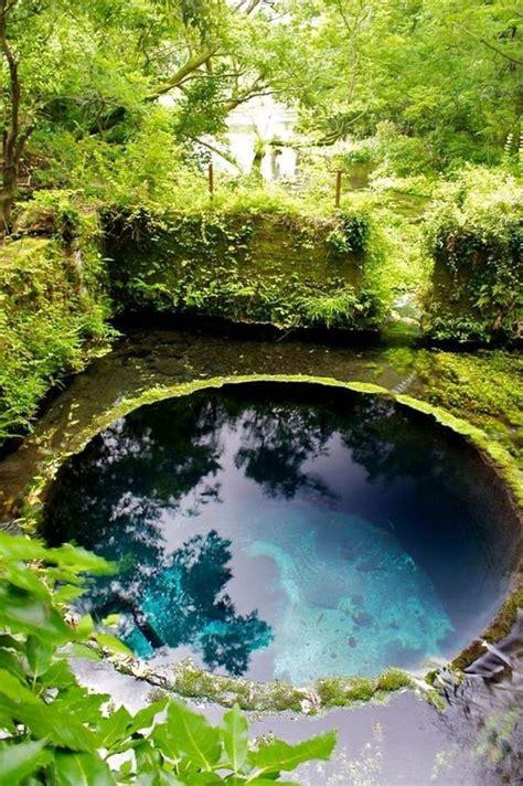 natural pools 227 best natural pool pond designs images on pinterest