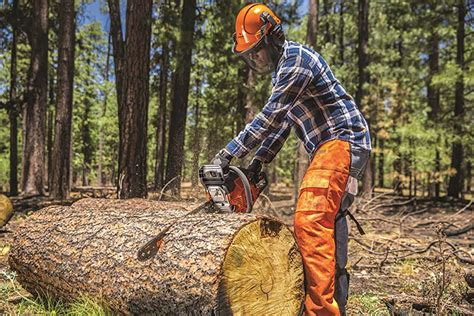 chainsaw  large trees buyers guide  reviews
