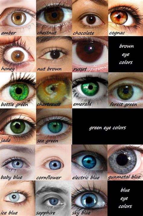 green eye color 25 best ideas about eye color charts on