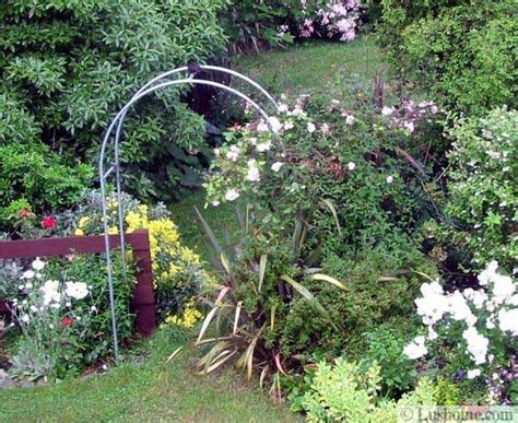 Garden Arch Climbing Plants 20 Metal Arches And Beautiful Yard Landscaping Ideas