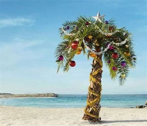 decorated palm tree christmasinjuly christmas in july