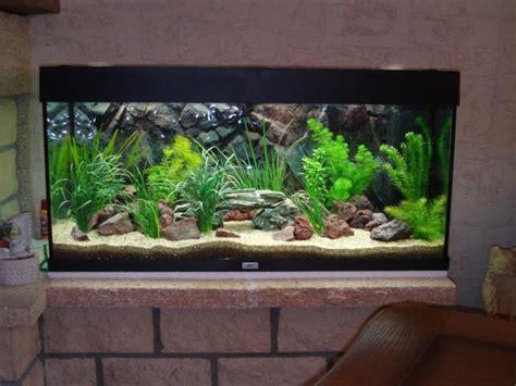 d 233 coration d aquarium eau douce 224 voir