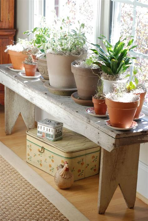 indoor plant bench wooden plant stands indoor woodworking projects plans