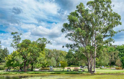 Gold Coast Botanic Gardens City Of Gold Coast Gold Coast Botanic Gardens Image Gallery