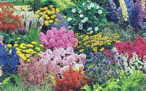 Garden Flowers Perennials Delightful Perennial Flower Garden By Pamos Pixdaus