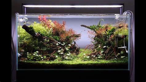 mudah  murah   membuat aquascape air terjun