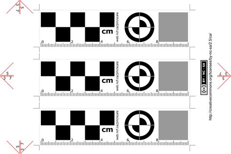 printable reference ruler printing reference scale