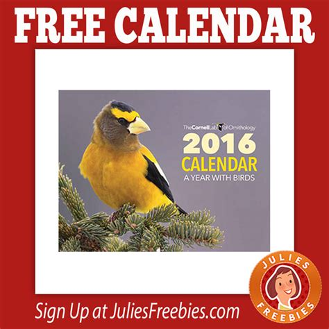 cornell bird watching website free 2016 cornell calendar julie s freebies
