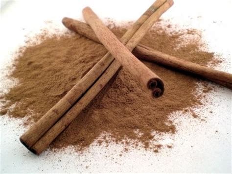 Cinnamon Dalchini Based Home Remedies by Cinnamon Dalchini Benefits Home Remedies By Speedyremedies