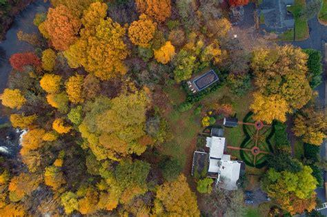 autumn views   drone views deciduous trees autumn