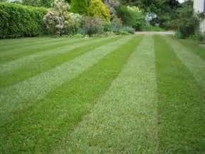 a to z landscaping how to make your lawn look beautiful this