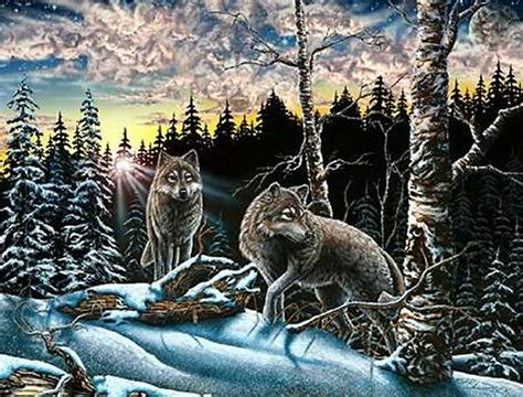 How Many Find How Many Wolves Can You Find In This Picture