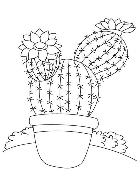 cactus coloring pages download and print cactus coloring
