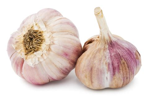 ate garlic turban and asiatic garlic for