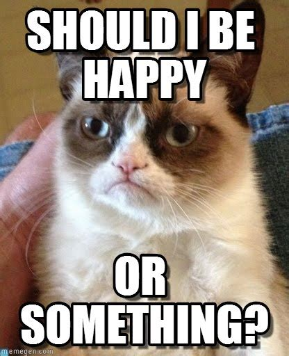 Grumpy Cat Meme Happy - should i be happy grumpy cat meme on memegen